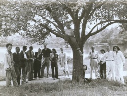 """Summer Arts Institute Faculty, Black Mountain College, 1946. Left to right: Leo Amino, Jacob Lawrence, Leo Lionni, Ted Dreier, Nora Lionni, Beaumont Newhall, Gwendolyn Lawrence, Ise Gropius, Jean Varda (in tree), Nancy Newhall (sitting), Walter Gropius, Mary """"Molly"""" Gregory, Josef Albers, Anni Albers. Courtesy of Western Regional Archives."""