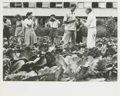 Black Mountain College: Fotografieunterricht mit Josef Albers, Lake Eden Campus, um 1944. © Courtesy of Western Regional Archives, States Archives of North Carolina